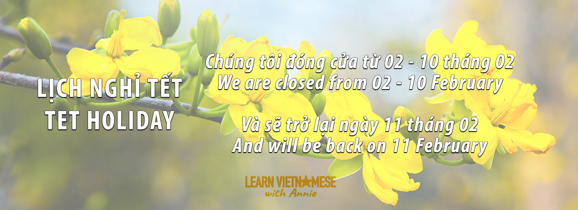 Learn Vietnamese With Annie