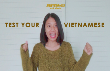 Test your Vietnamese (beginner level)