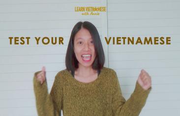 Test your Vietnamese (beginner level)